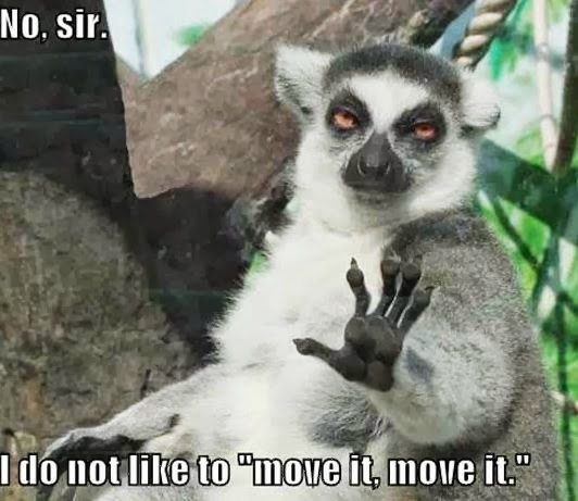 no-sir-i-dont-like-to-move-it-move-it2
