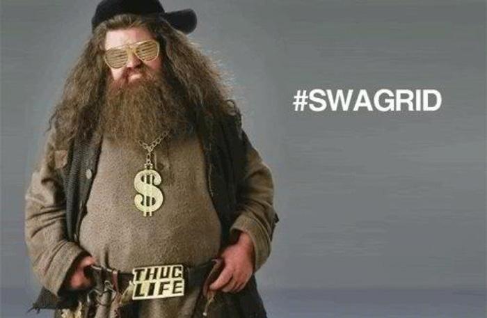 Hagrid som Swagrid
