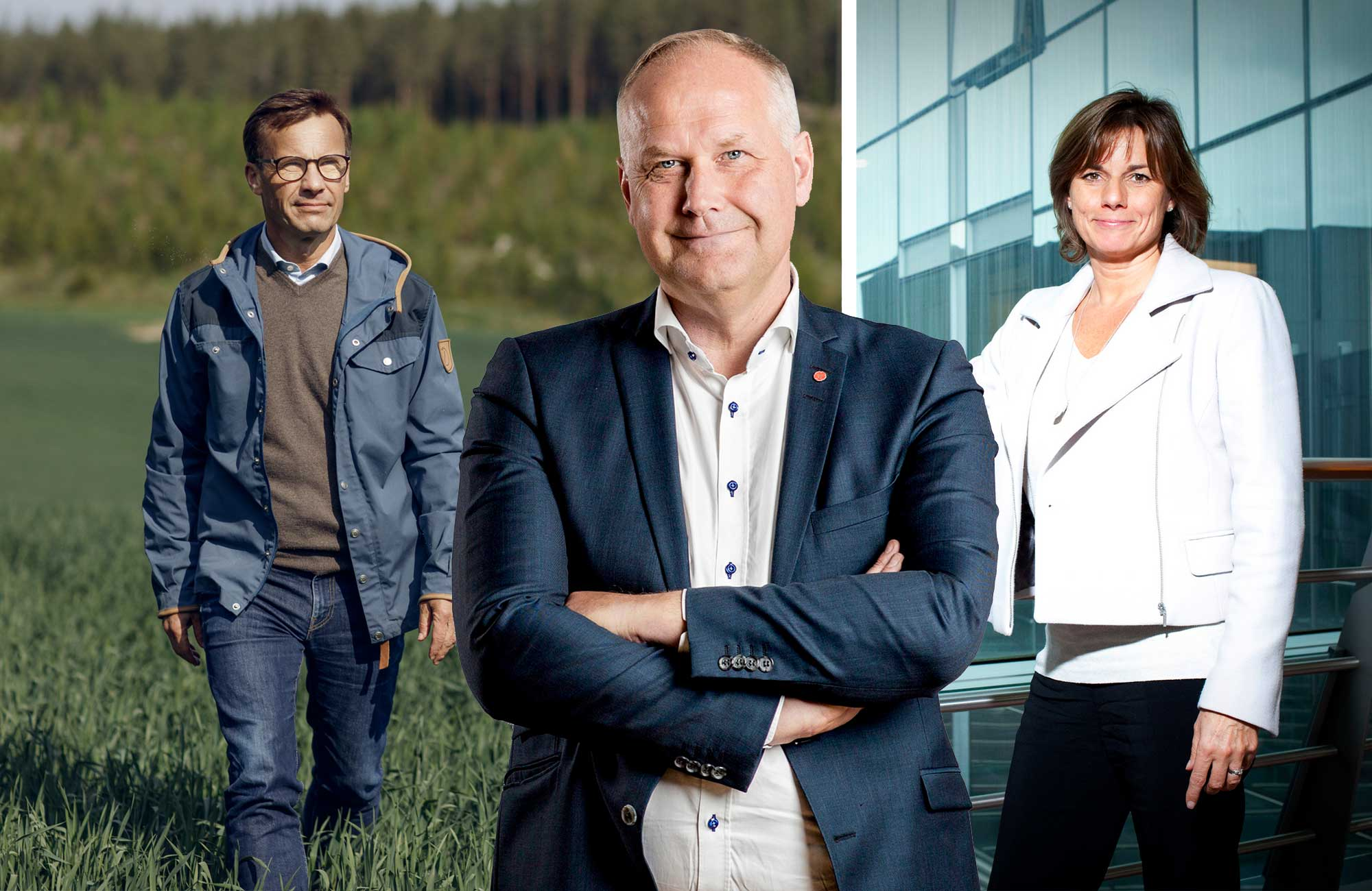 Snygga svenska politiker