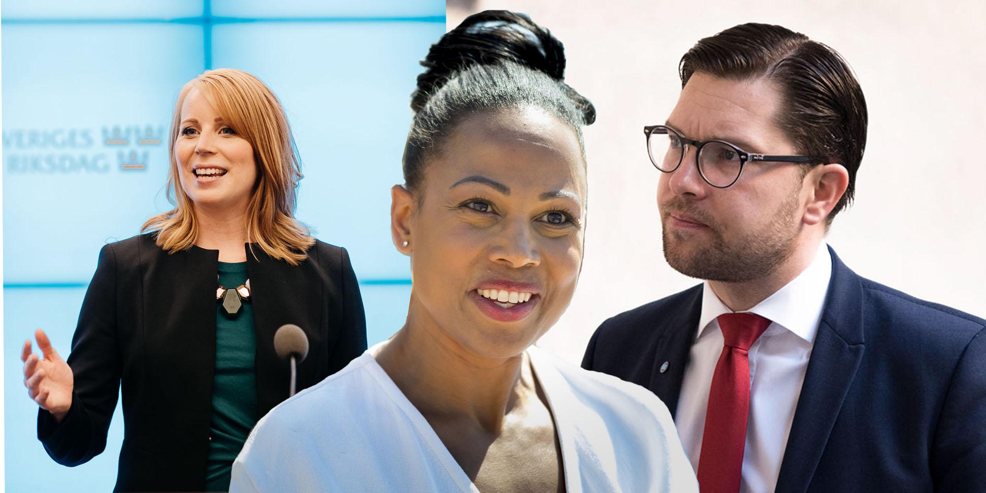 Sverigedemokraterna politik