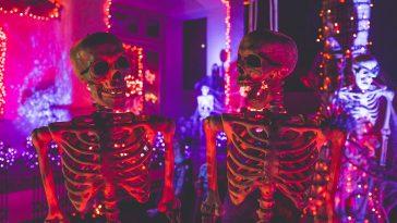 allt om halloween, från datum till kläder och pumpor