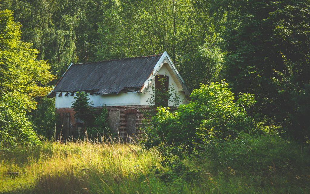 Att renovera ett gammalt ödehus har blivit lite av en trend.