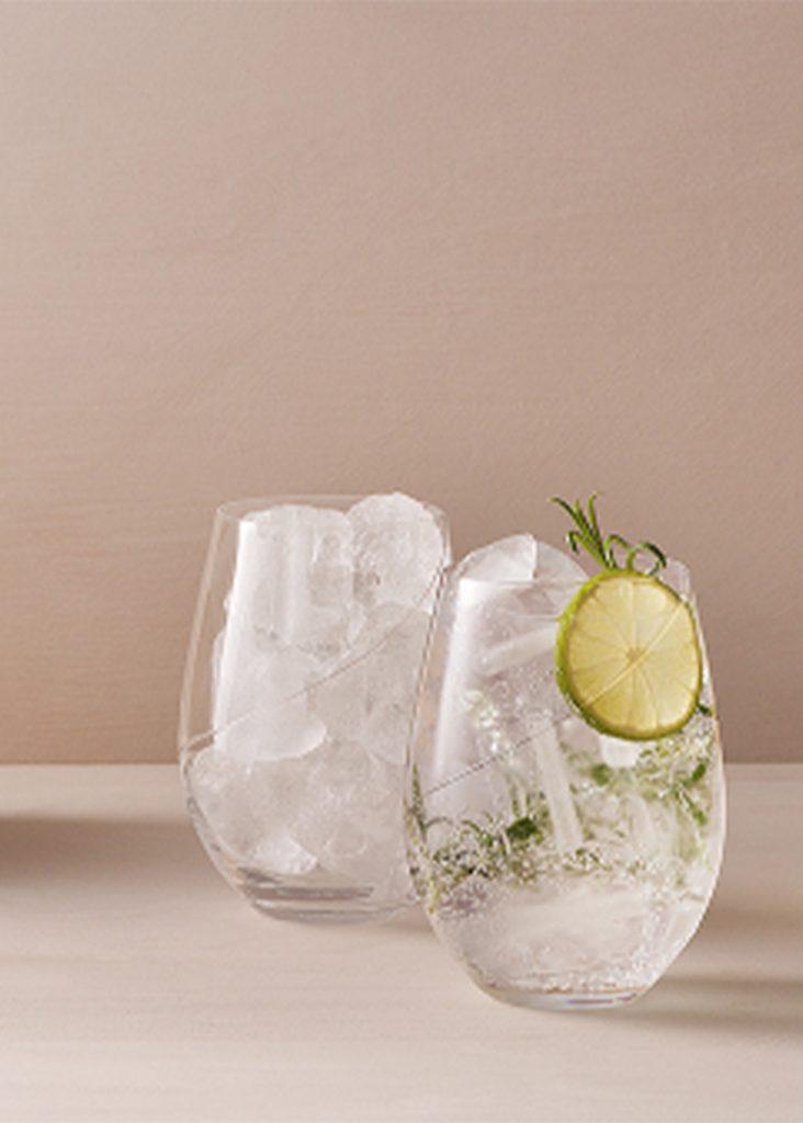 gin och tonic recept 1