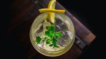 hur blandar man en gin och tonic?