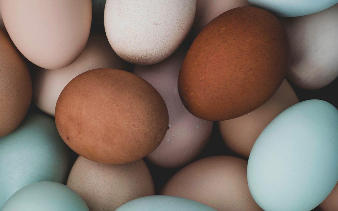 hur kokar man ägg?