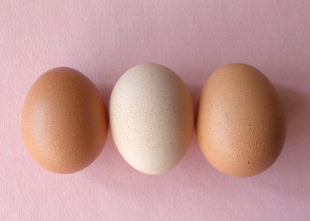 hur länge håller ett ägg