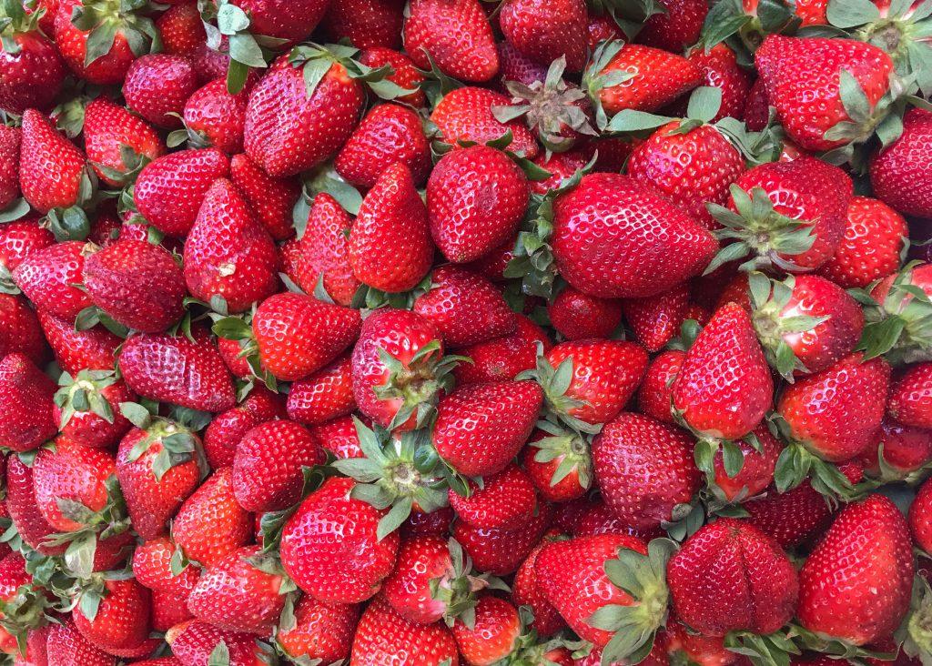 när ska man plantera jordgubbar