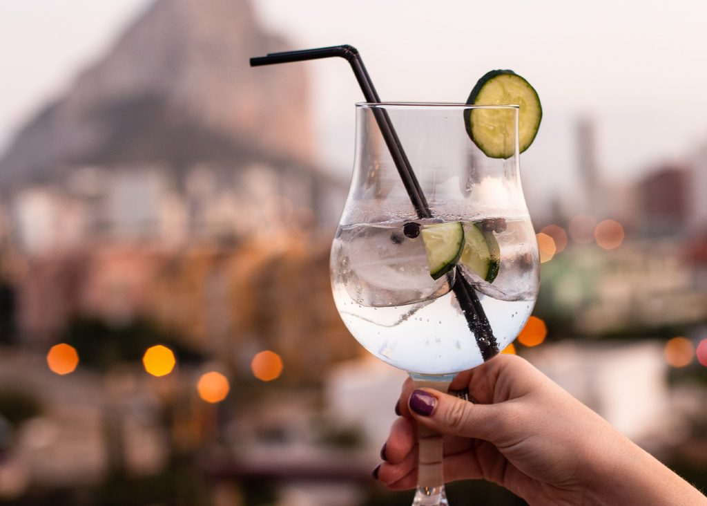 recept på gin och tonic