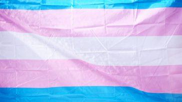 10 saker alla borde veta om transpersoner