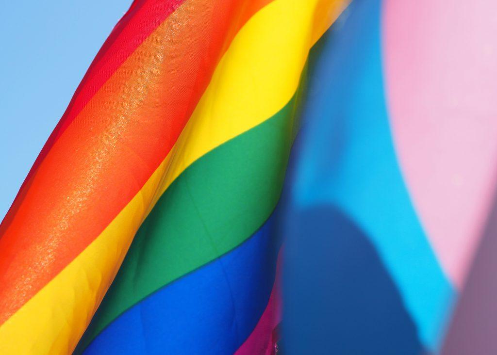queer flagga teori defnition synonym