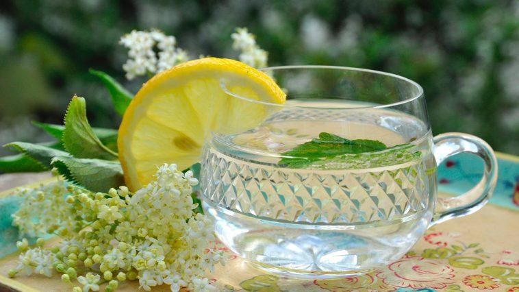 flädersaft utan citronsyra