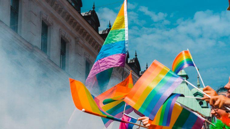vad betyder pansexuell flagga