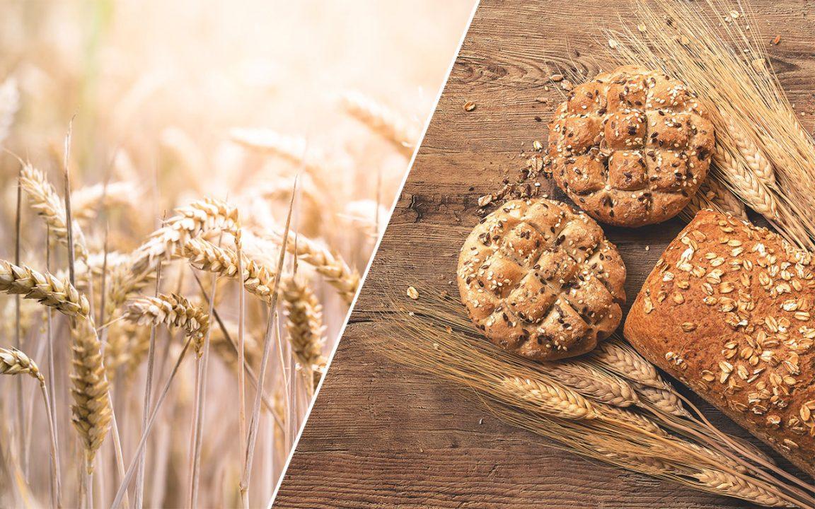 kolhydrater nyttigt dragarbild